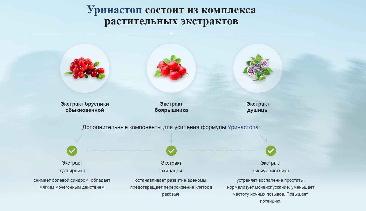 Уринастоп состав