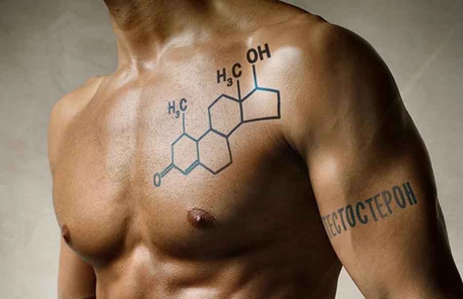 Тестостерон гормон